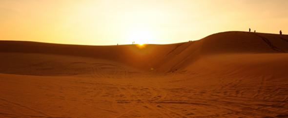 Msbx bg dunes 590