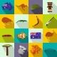 Australia Icons Flat