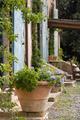 Terracotta plant pot outside a Tuscan farmhouse - PhotoDune Item for Sale