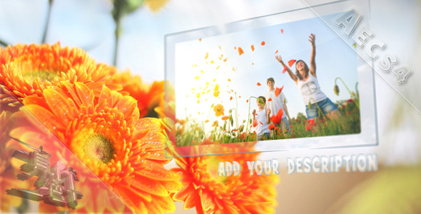 VideoHive Sunny Flowers 1572942
