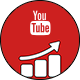 YouTube Subscribers for Social Followers Analytics