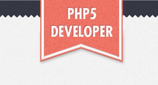 PHP5 Developer