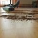 Vacuuming a Mess Floor