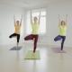 Slender Fit Women Doing Yoga On Exercise