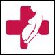 Pregnancy Medicine Logo Template
