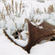 Snow Covered Antlers - VideoHive Item for Sale
