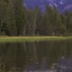 Rain on Pond - VideoHive Item for Sale