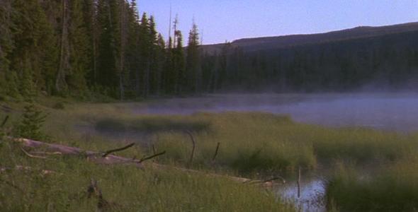 Mist Rising on Pond 2