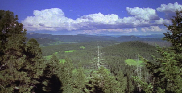 View Over Green Valley