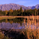 Scenic of Grand Tetons and Beaver Dam - VideoHive Item for Sale