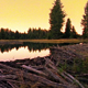 Scenic Beaver Pond