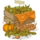 Bulb Onion  Ripe Pumpkins And Wooden Box