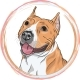 Vector Sketch Smiling Dog American Staffordshire