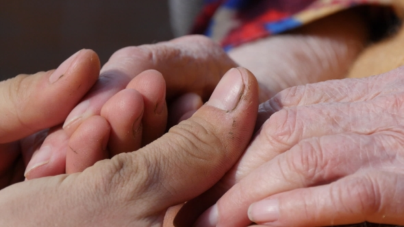 Download Male Hands Are Touching Hands of Grandmother nulled download