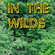 In The Wilds