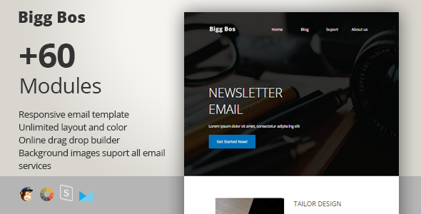 Big Boss - Responsive Email + StampReady Builder