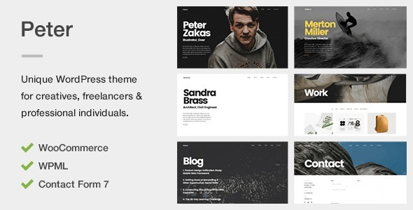 Download Peter - A Unique Portfolio Theme for Creatives, Freelancers & Professional Individuals nulled download