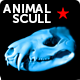 Animal 3d scull