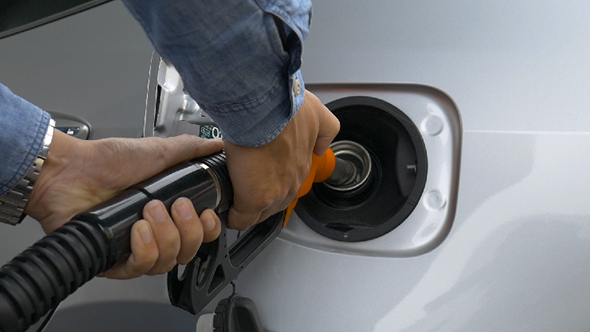 Download Gasoline nulled download