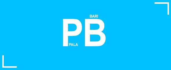 Pb-profile