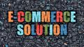 E-Commerce Solution Concept. Multicolor on Dark Brickwall.