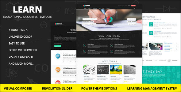 Download Learn - Education, eLearning WordPress Theme nulled download