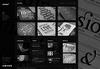 4-homepage-black.__thumbnail