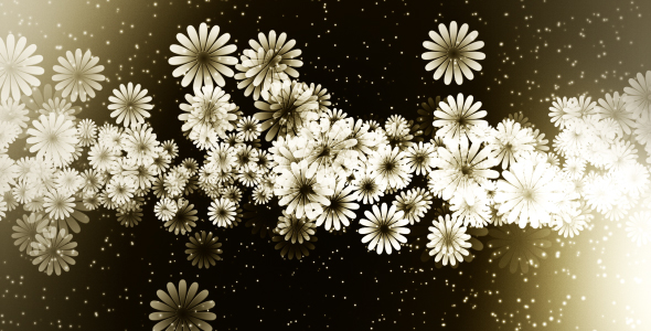 Värikkäitä kukkia - Taustat Motion Graphics