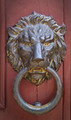 Brass doorknocker in the shape of ferocious lion - PhotoDune Item for Sale