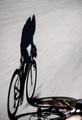 Speedy shadow