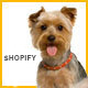 Animer - Pet Care Shopify Theme