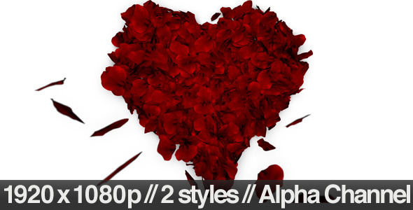 VideoHive Rose Petals Fall into Heart Shape Alpha Included 1600365