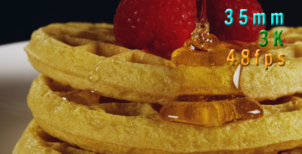Download Waffles Berries And Syrup 30 nulled download