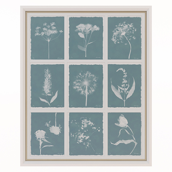 Charlotte Morgan Wild Meadow Flowers Nine Piece - 3DOcean Item for Sale