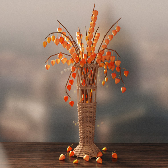 Vase with physalis - 3DOcean Item for Sale