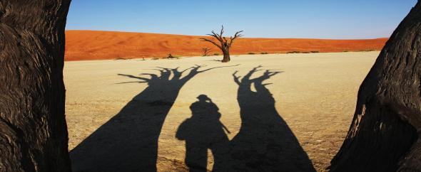 Namib%20desert_590x242