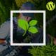 Gardener - Gardening, Lawn and Landscaping WordPress Theme
