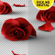 Falling Roses Version 02