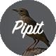 Pipit - A Responsive WordPress Blog Theme