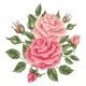 Floral Element With Vintage Roses. Decorative