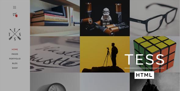 TESS - Creative Portfolio Template