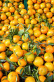 Fresh clementines with green leaves on a market