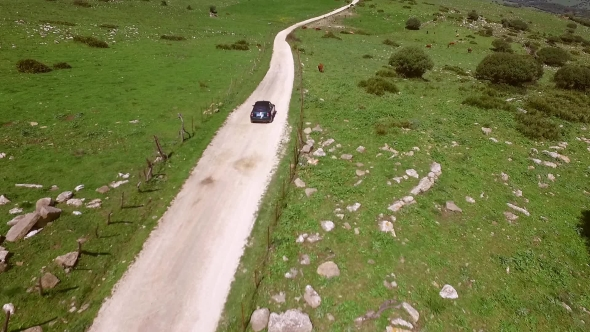 Download Lone Car Driving On a Winding Rural Road nulled download