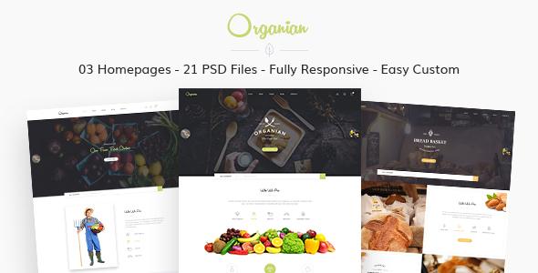 Organian - Multiconcept Organic Store PSD Template