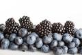 Berries. Blueberries and blackberries close-up.