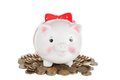 White pig money box