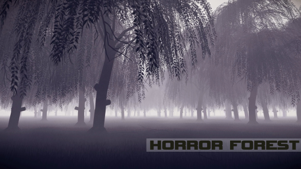 Kauhu Forest - Taustat Luonnosta Motion Graphics