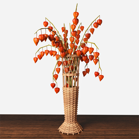 Wicker vase with physalis - 3DOcean Item for Sale
