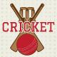 Cricket Badges & Design Elements