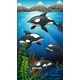 Killer Whales Swimming Under the Sea